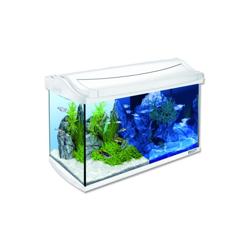 TETRA akvaristika Akvárium set TETRA AquaArt LED bílé 57 x 30 x 35 cm 60l