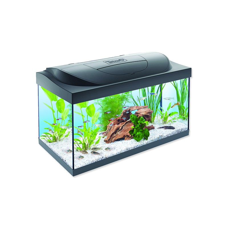 TETRA akvaristika Akvárium set TETRA Starter Line LED 60 x 30 x 30 cm 54l
