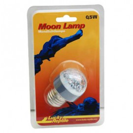 Lucky Reptile Moon Lamp