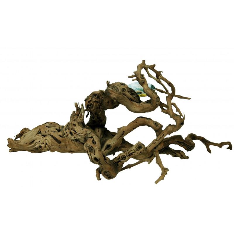 Lucky Reptile Grapevine Premium 60-100 cm