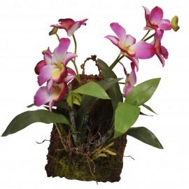 Lucky Reptile Závěsná orchidej - purpurová cca 20x30 cm