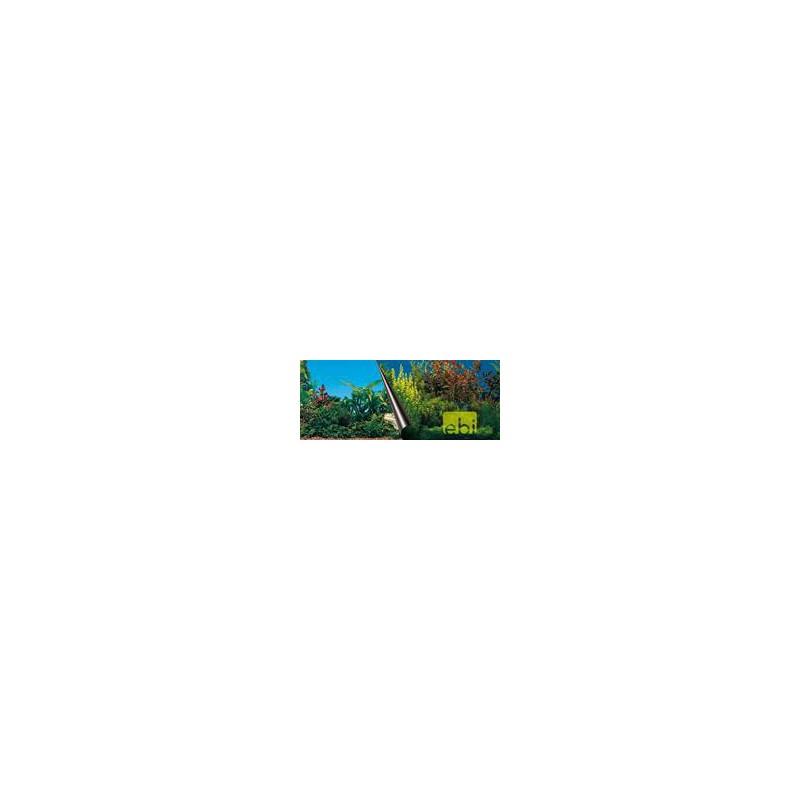 SAMOHYL Pozadí akvarijní Beauty+Sea Duvo+ 80 x 40 cm