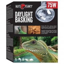 Žárovka REPTI PLANET Daylight Basking Spot 75W
