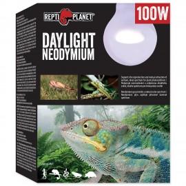 zarovka-repti-planet-daylight-neodymium-100w