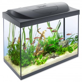 akvarium-set-tetra-starter-line-led-61-x-32-x-51-cm-80l