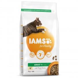 iams-cat-adult-chicken-2kg
